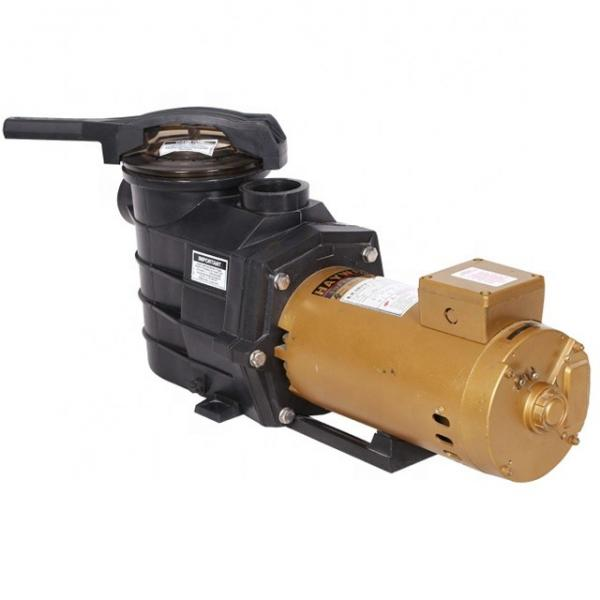 Vickers PV023R1E1AYVMFC+PGP505A030CA1H Piston Pump PV Series #1 image